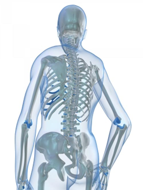 Natural Treatment Osteoporosis Spine