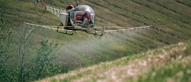 Could Glyphosate, Key Ingredient In Roundup Herbicide, Cause Infertility Or Cancer?