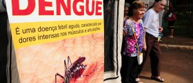 Immunization For Dengue Fever May Be Coming Soon