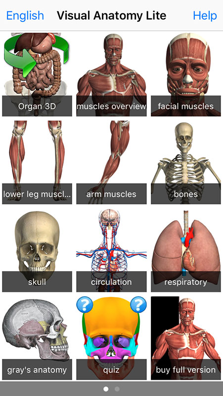 Visual Anatomy Lite Free App An Interactive 3d Anatomy Reference