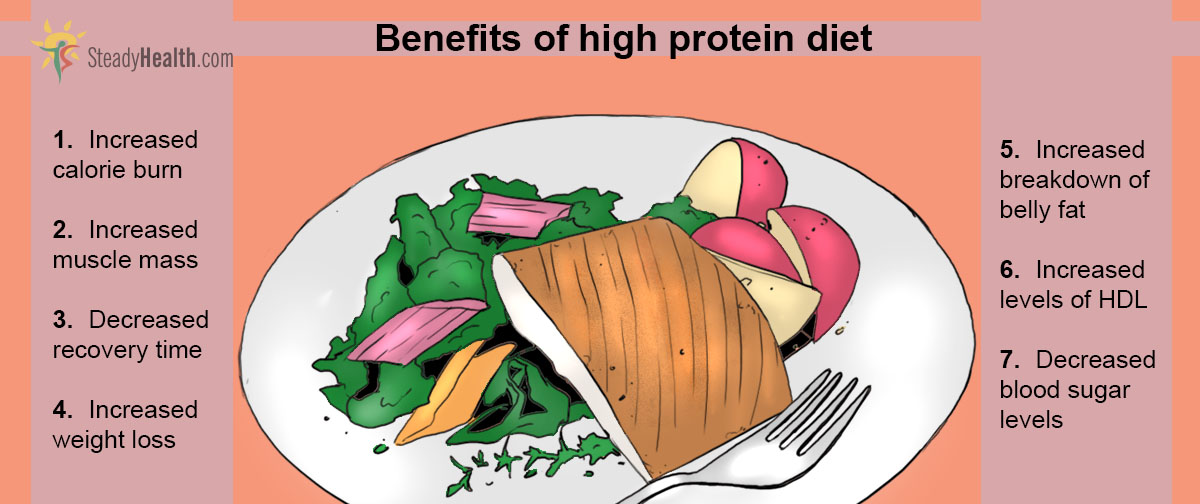 The Benefits Of A High Protein Low Carb Diet