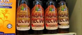 Agave nectar nutrition facts