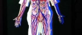 Circulatory system diseases and problems