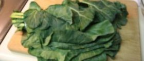 Collard greens nutrition