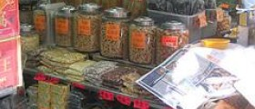 Different types of herbal medicine systems