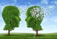 Drug abuse and schizophrenia