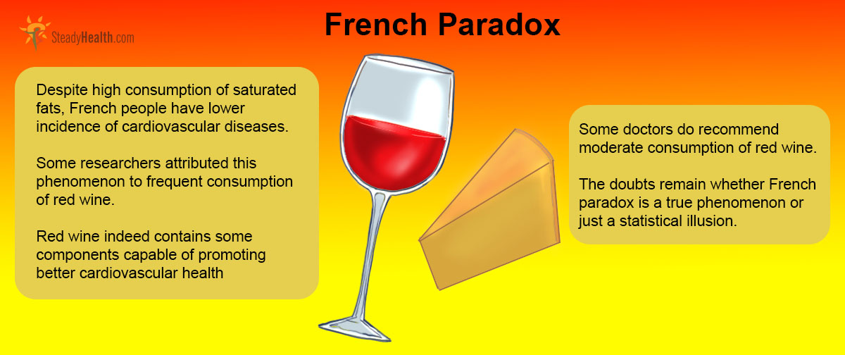 french paradox Herein was the french paradox of 1789, an internal struggle between two forces that, by their very nature, typically stand at opposite ends of the revolutionary spectrum - civil liberties and freedom versus strong, central, internationally respected government.