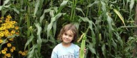 Growing taller naturally - basic tips on how to get taller