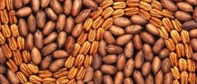 Pecans nutrition facts
