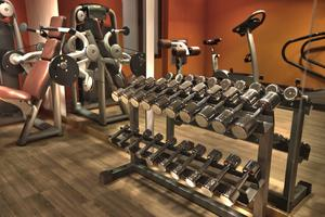 Physical fitness equipment