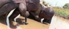 Prevention of guinea worm