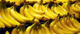 Some nutritional facts about bananas