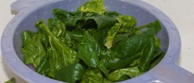Health Benefits of Spinach: Popeye was Right