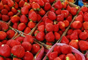 Strawberry allergy facts