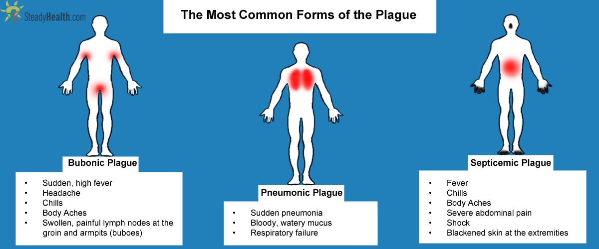 an analysis of the history symptoms cause and mortality of the bubonic plague Map showing the history and distribution of the black death around the  the  traditional and most widely accepted answer is the bubonic plague, caused by   'terrible' and 'black' death it has nothing to do with the symptoms.