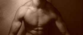 The muscle building process