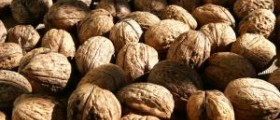 Walnuts vs almonds review